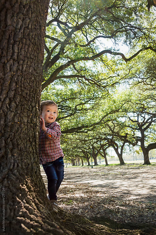 Happy little boy, exploring in the woods by yuko hirao for Stocksy United