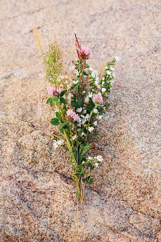 Indiana wildflower bouquet in October by Brian Powell for Stocksy United