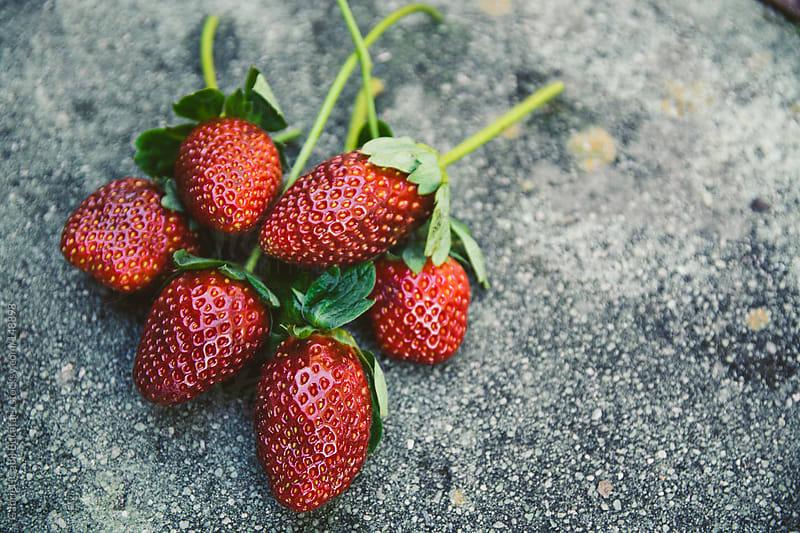 Strawberry Bunch by Gabriel (Gabi) Bucataru for Stocksy United