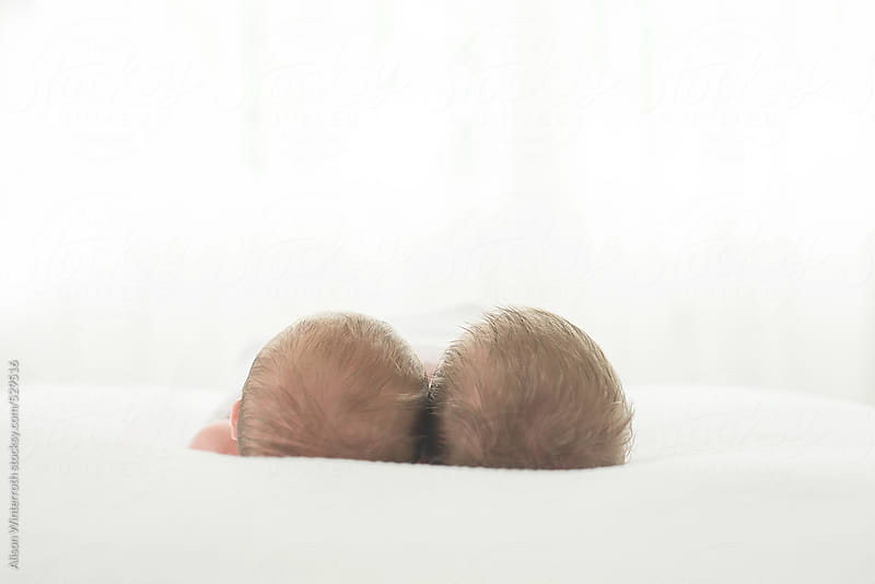Twin Newborn Babies' Heads by Alison Winterroth for Stocksy United