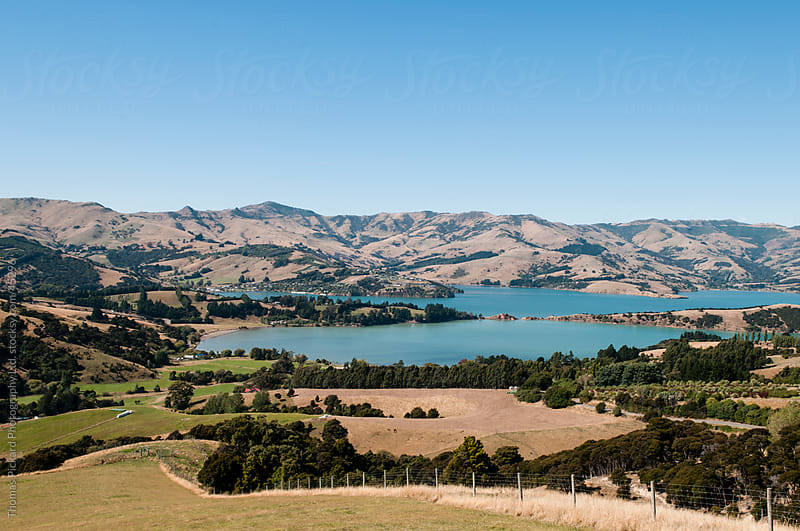 View over Akaroa, Banks Peninsula New Zealand. by Thomas Pickard for Stocksy United