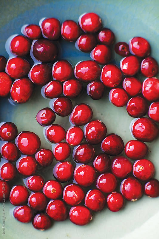 Cranberries Soaking In Water by Sara Remington for Stocksy United