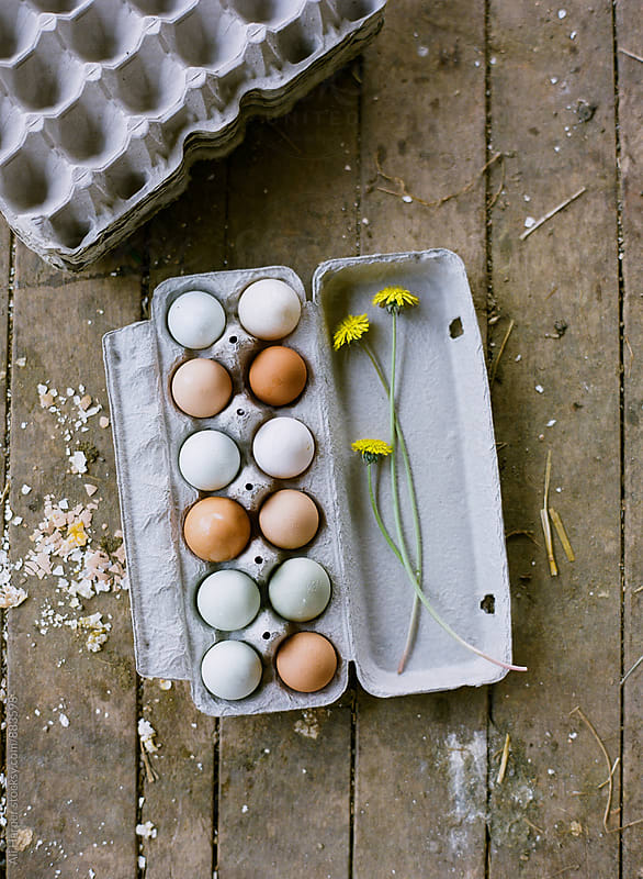 Colorful free-range, organic chicken eggs in carton by Ali Harper for Stocksy United