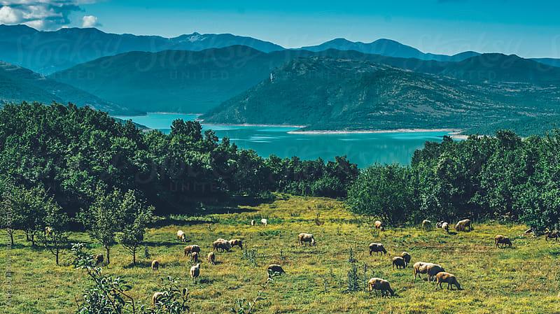 Beautiful lake view by Koki Jovanovic for Stocksy United