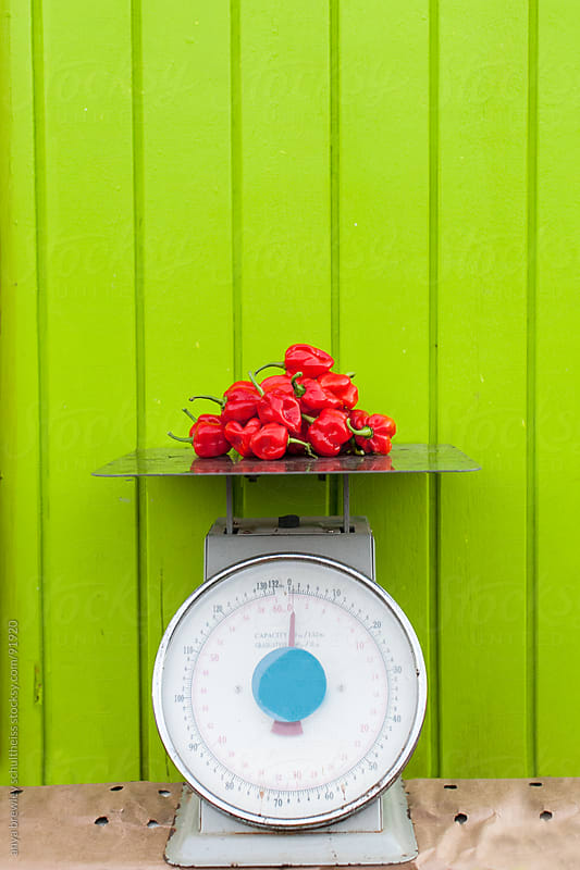 A pile of red hot peppers on a measuring scale by anya brewley schultheiss for Stocksy United