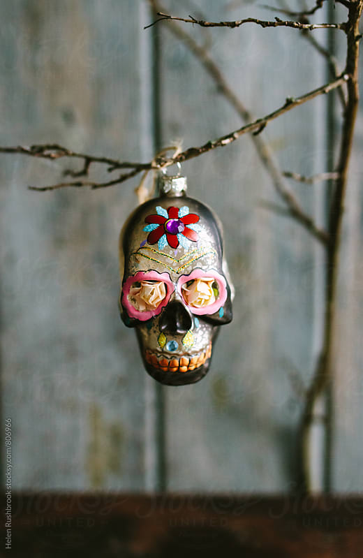 Decorative skull Christmas ornament on a branch. by Helen Rushbrook for Stocksy United