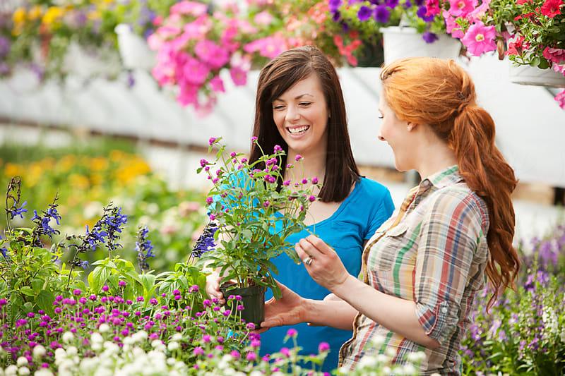 Nursery: Having Fun Shopping for Plants by Sean Locke for Stocksy United