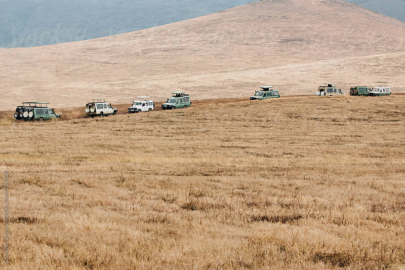 line of safari trucks in Ngorongoro Crater by Cameron Zegers for Stocksy United