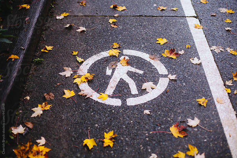 Walk sign with scattered leaves. by Cherish Bryck for Stocksy United
