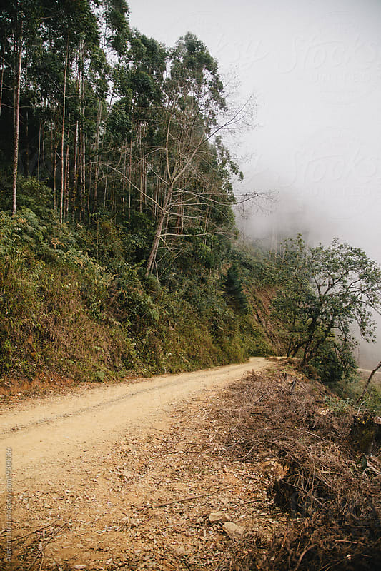 Road on the side of a Mountain in Costa Rica. by Austin Lord for Stocksy United