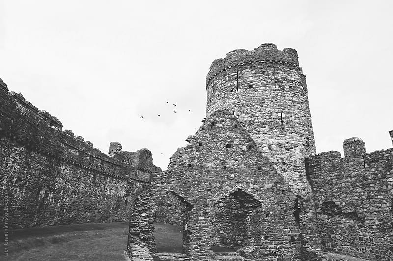 Birds at Kidwelly Castle by Jen Grantham for Stocksy United