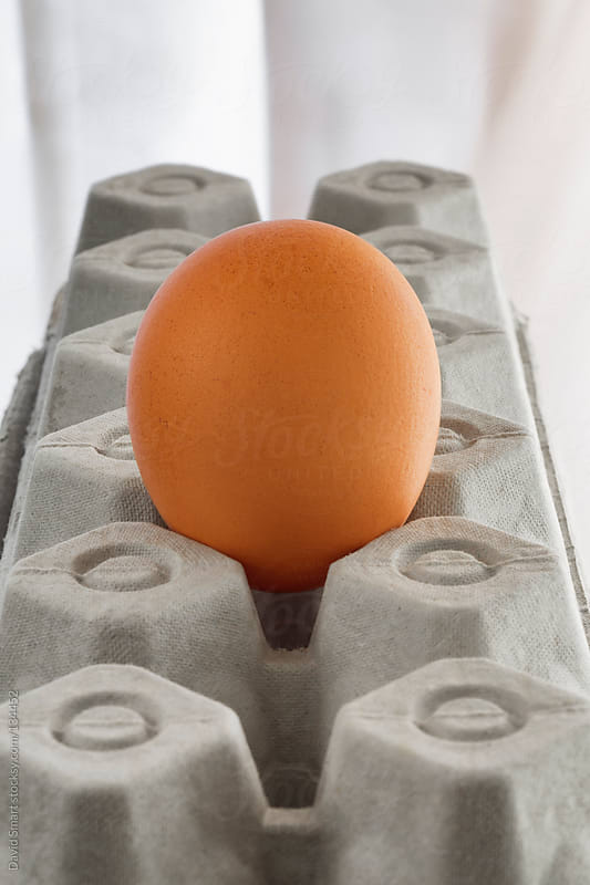 Single brown egg on a carton made of recycled paper by David Smart for Stocksy United
