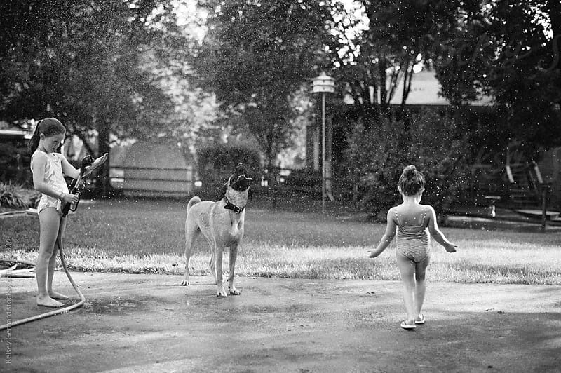 Sisters play with their dog and a hose in the back yard. by Kelsey Gerhard for Stocksy United