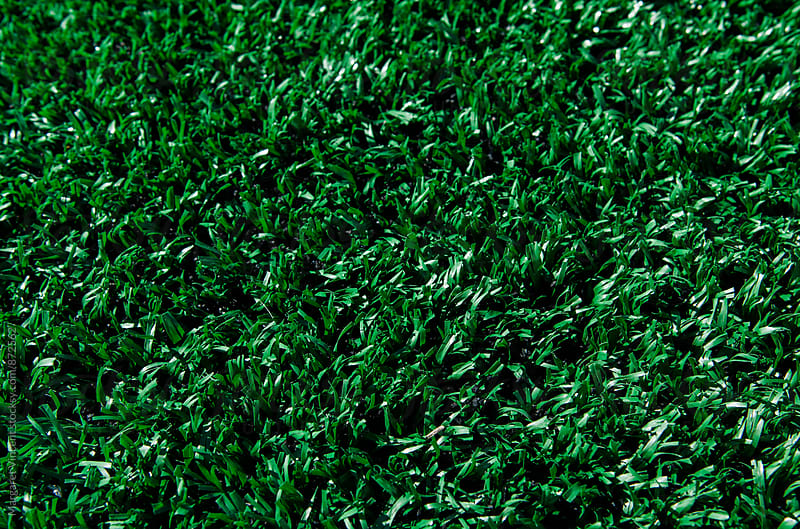 fake grass background by Margaret Vincent for Stocksy United