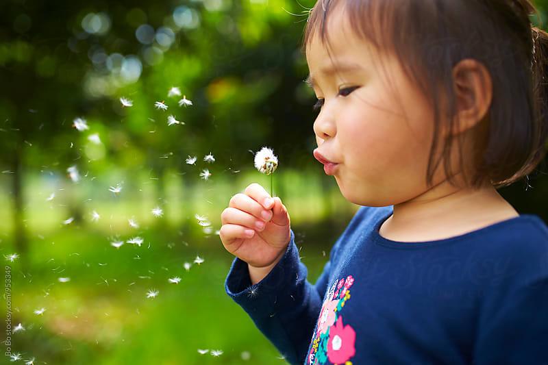 little asian girl blowing dandelion Outdoor by Bo Bo for Stocksy United
