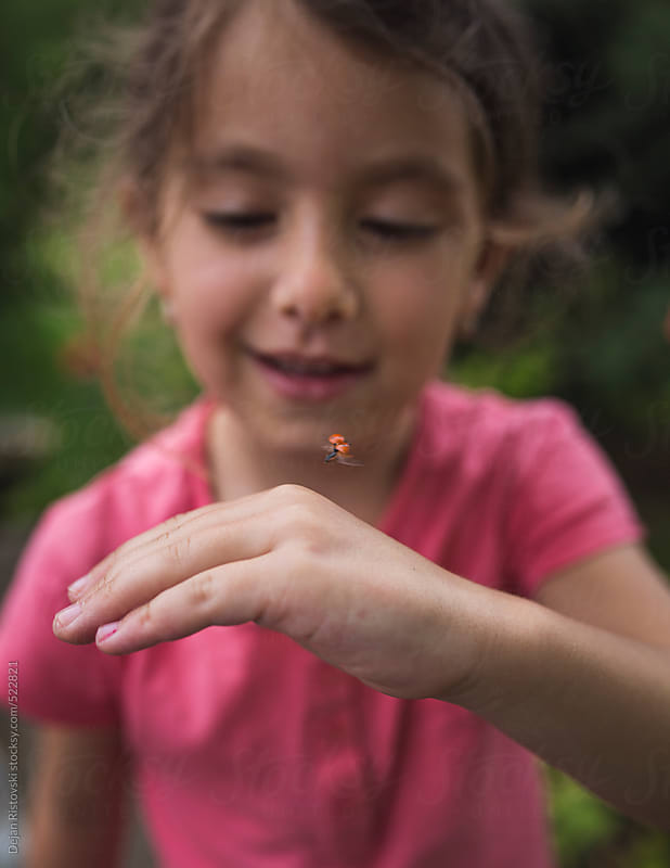 Curious child looking at  a ladybug by Dejan Ristovski for Stocksy United