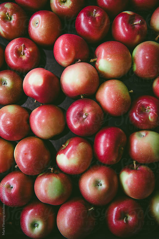 Apples by Mark Fleming for Stocksy United