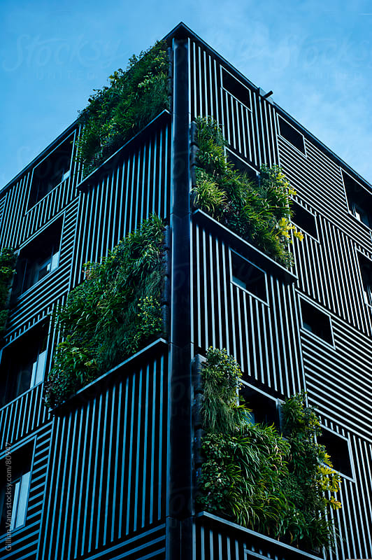 modern building with vertical gardens by Gillian Vann for Stocksy United