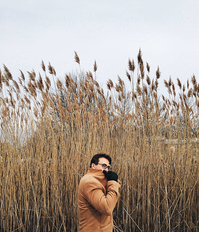 Man in the Reeds by Taylor Kampa for Stocksy United