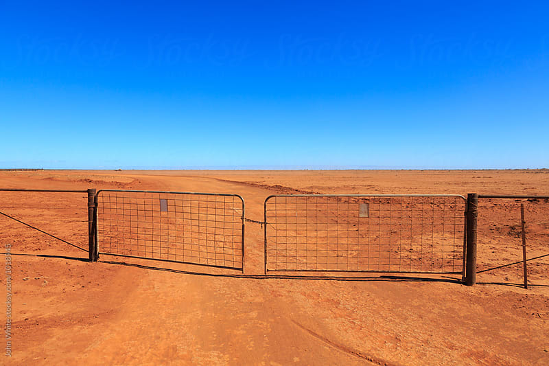 A dry dusty paddock on a sheep station. Western Australia. by John White for Stocksy United