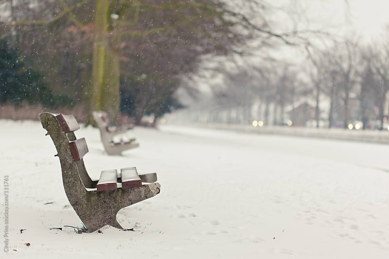 A broken empty park bench in the snow by Cindy Prins for Stocksy United
