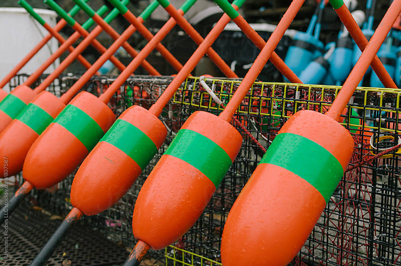 Maine Lobster Buoys by Raymond Forbes LLC for Stocksy United