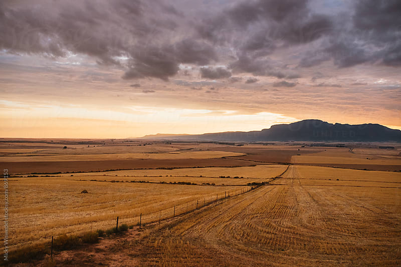 rural farmland landscape during a dramatic golden sunset by Micky Wiswedel for Stocksy United