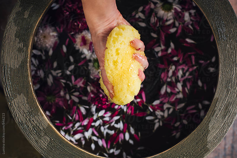 Hand of Woman Preparing a Relaxing Flower Bath  by Lumina for Stocksy United