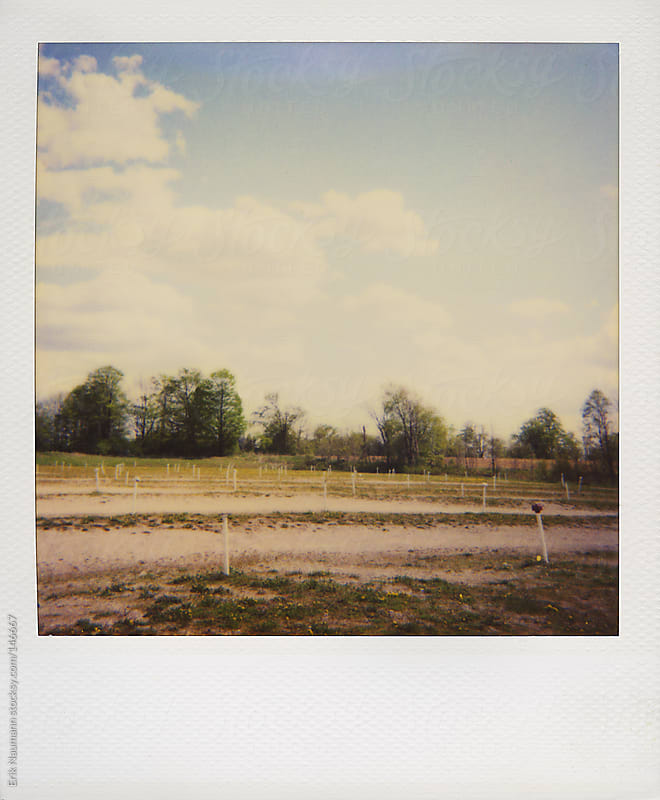 Polaroid of a drive-in theatre parking lot by Erik Naumann for Stocksy United