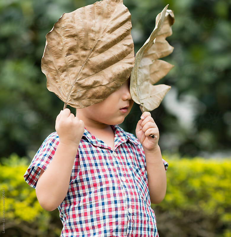 Asian boy hiding his face behind dry leaf by Lawren Lu for Stocksy United