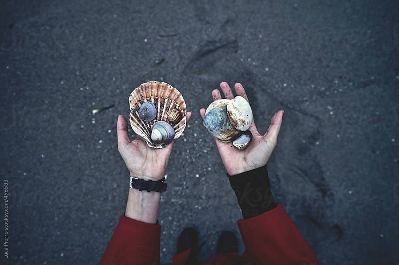 Female hands showing seashells by Luca Pierro for Stocksy United