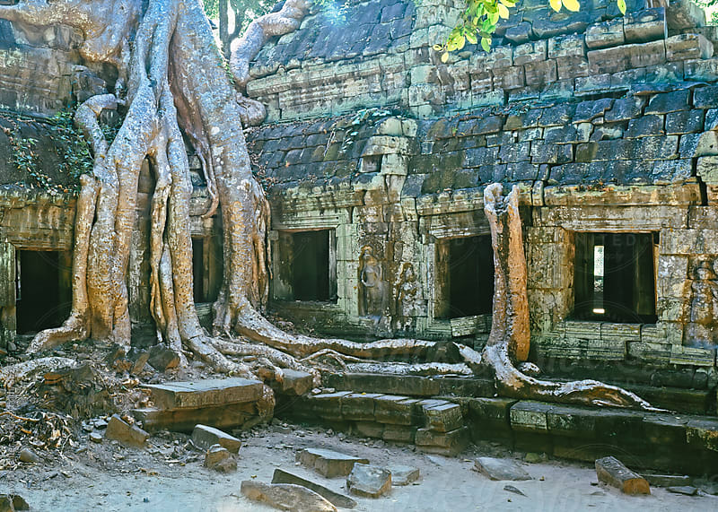 Cambodia, Siem Reap, Angkor Wat, Ta Phrohm, left to the elements, Giant fig tree by Gavin Hellier for Stocksy United