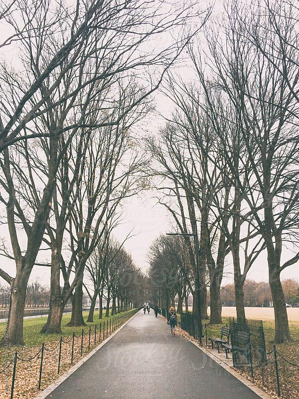 National Mall Walkway by Ryan Matthew Smith for Stocksy United