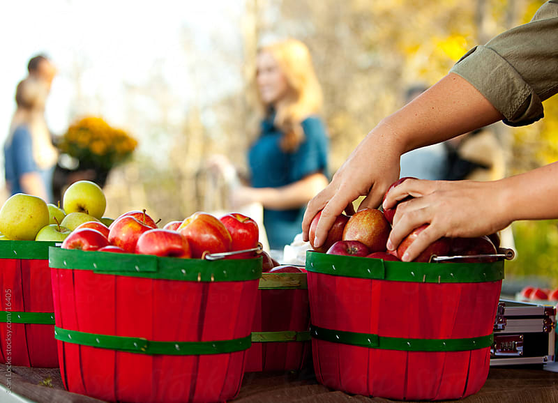 Farmer's Market: Grower Arranging Apples for Purchase by Sean Locke for Stocksy United