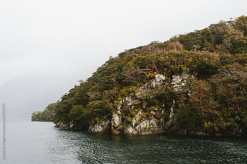 Doubtful Sound, New Zealand landscape by Cameron Zegers for Stocksy United