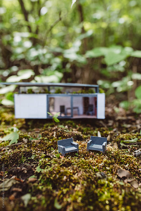 Handmade modern tiny house and furniture in forest setting by Carey Shaw for Stocksy United