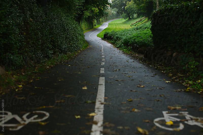 Bikeway by Zocky for Stocksy United