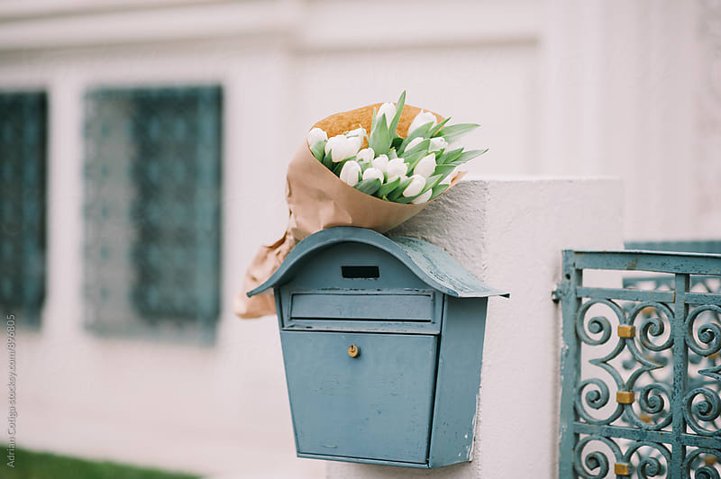 Flowers bouquets; Bouquet of white tulips in the mailbox by Adrian Cotiga for Stocksy United