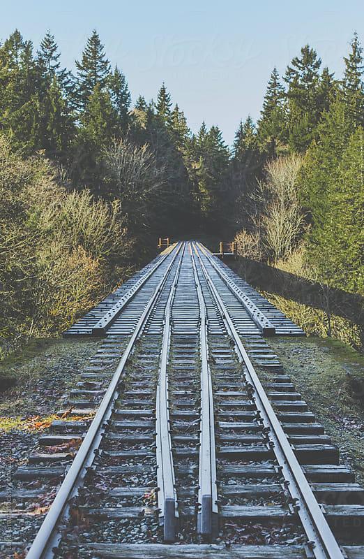 Railway Trestle by Luke Gram for Stocksy United