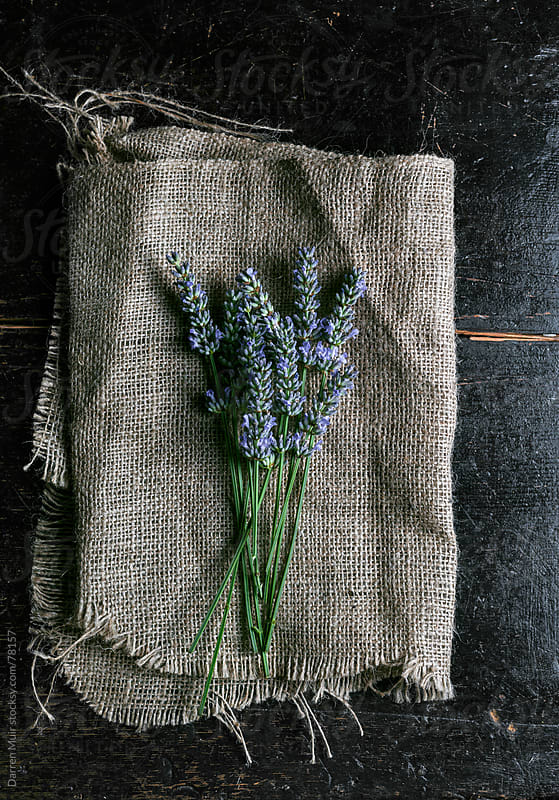 Lavender on rustic cloth. by Darren Muir for Stocksy United