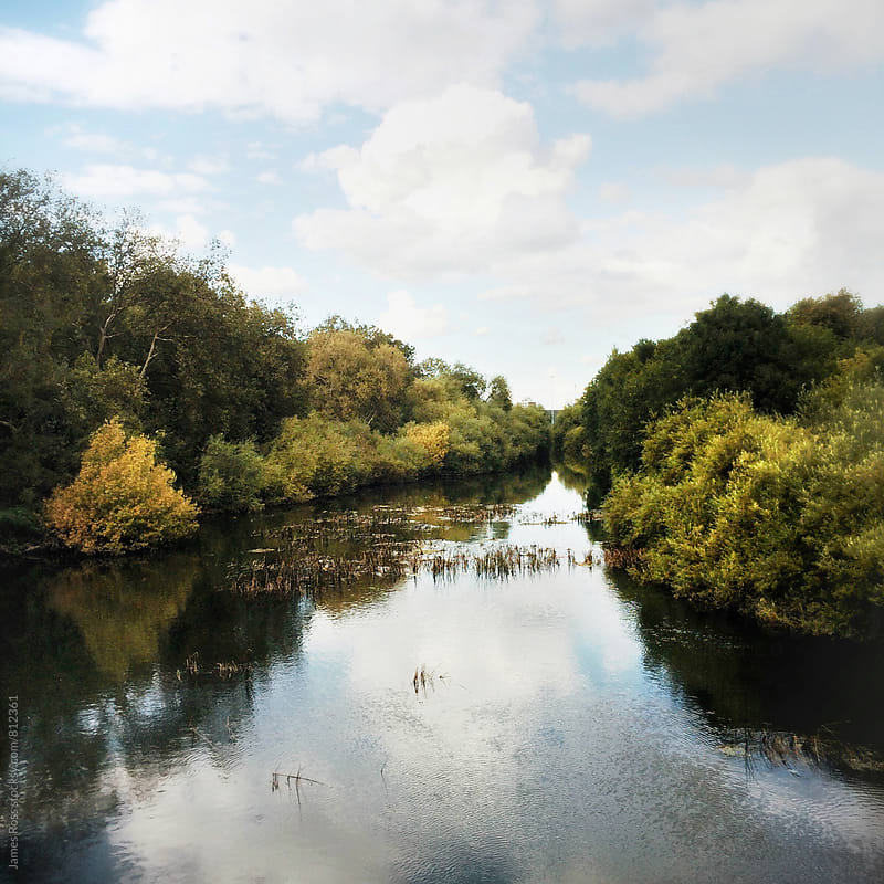 A river running through a tree lined banks by James Ross for Stocksy United