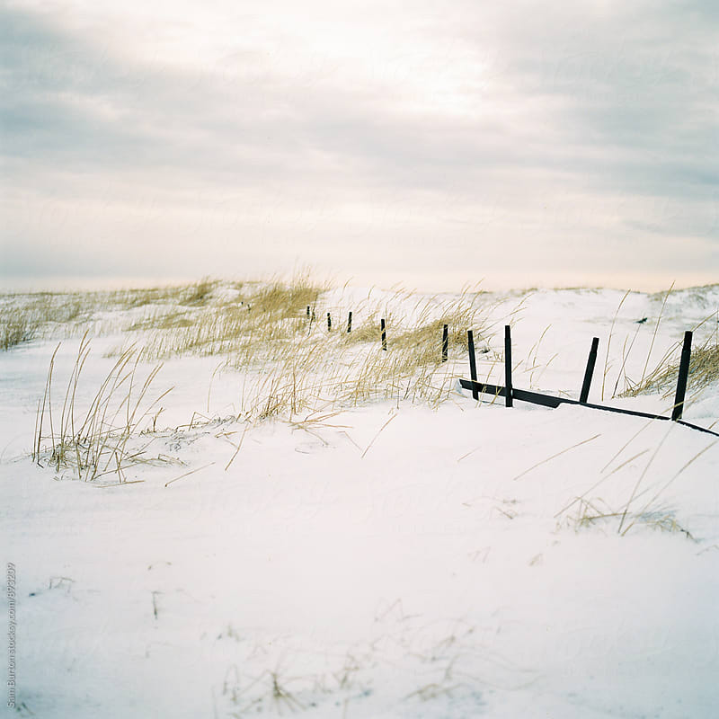 Snow covered fence by Sam Burton for Stocksy United