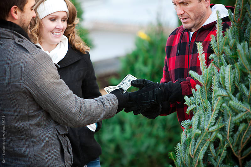 Tree Lot: Paying Employee For Christmas Tree by Sean Locke for Stocksy United