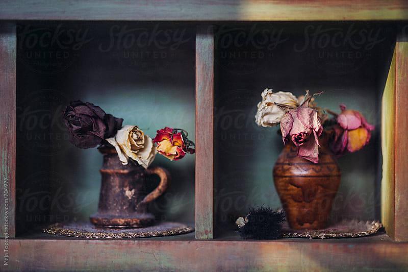 Dry roses in vintage vases by Maja Topcagic for Stocksy United