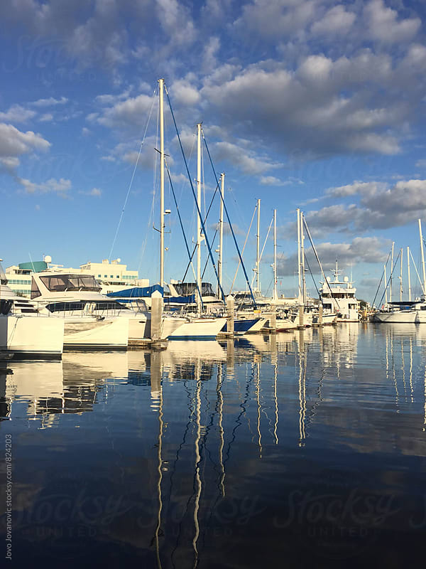 Sailboats moored in a marina on a sunny day by Jovo Jovanovic for Stocksy United