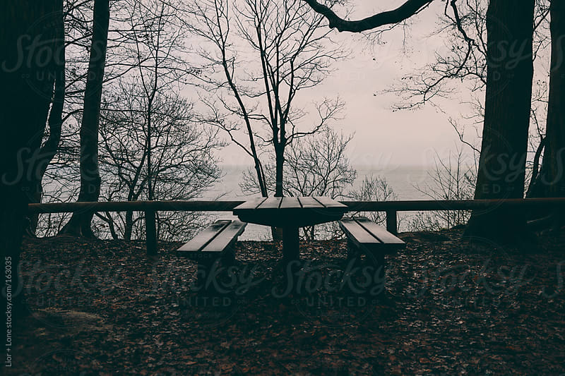Picnic table in the forrest overlooking the ocean by Lior + Lone for Stocksy United