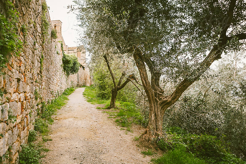 Rural Footpath along the Walls of a Little Town in Tuscany, Italy by Giorgio Magini for Stocksy United