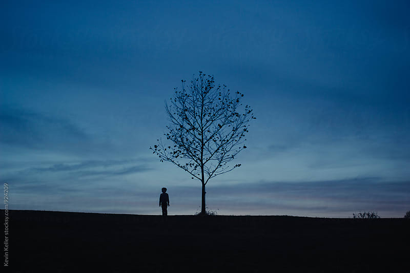 Boy Standing Near Small Tree in the Distance by Kevin Keller for Stocksy United