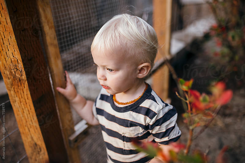 A Toddler boy with blonde hair stands by a wire fence by Amanda Voelker for Stocksy United