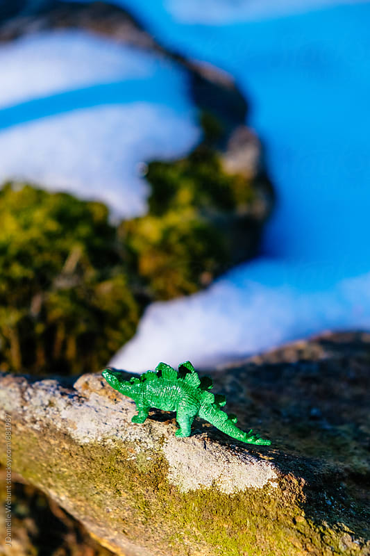 A miniature plastic dinosaur roaming in the snow. by J Danielle Wehunt for Stocksy United